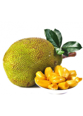 Jackfruit Products