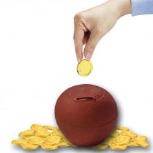 Coin Box Clay - Kudukka | Gullak