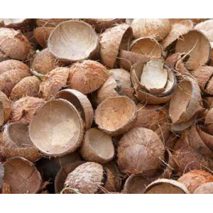 Coconut Shell (Chiratta)