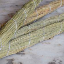 Darbha Grass